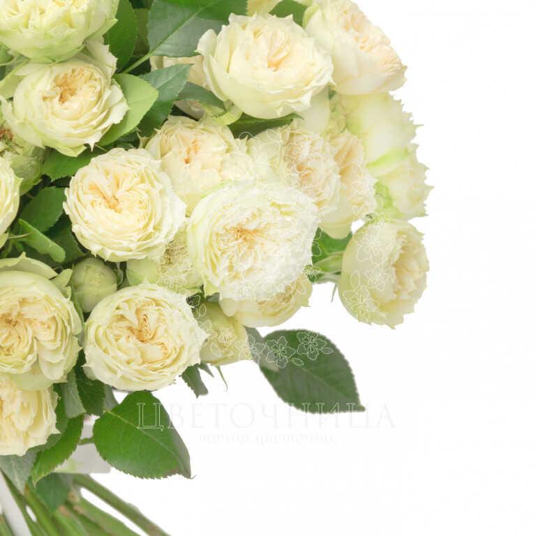 Доставить Букет «Первосортные белые розы»